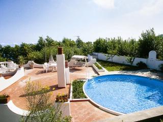 Villino Madiva - Ischia vacation rentals