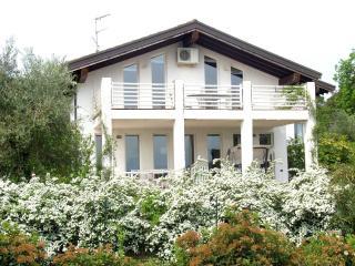 Villa Salmerino 10 - San Felice del Benaco vacation rentals