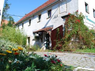 Grüne Idylle im Dresdener Süden :-) - Dresden vacation rentals