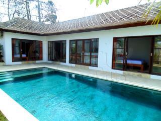 Villa Tiare - 3 Bedrooms - Ungasan - Ungasan vacation rentals