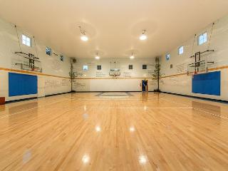 The GYM!  Fantastic Venue for Families and Youth Groups! *Winter Specials* - Ronald vacation rentals