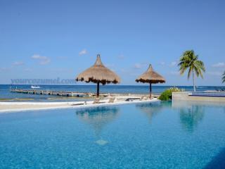 Villa El Milagrito Perfect Getaway for Divers! - Cozumel vacation rentals