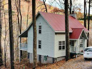 North Georgia Mountain Cabin - Mountain Paradise - Blairsville vacation rentals
