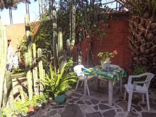 Casita Antigua Chica - Dolores Hidalgo vacation rentals