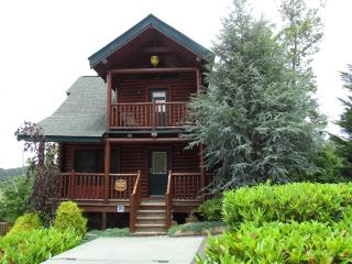 Memory Maker L Log Cabin, pool access, 5 min pkwy - Sevierville vacation rentals