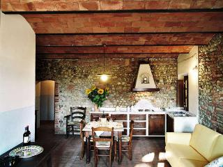 CASA D'ERA COUNTRY HOLIDAY HOUSE flat Rigoletto - Lajatico vacation rentals