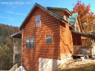 4 Bedroom Gatlinburg Cabin Close to Ober Ski Resort on Ski Mountain Road - Sevierville vacation rentals