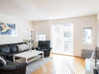 Stavanger Small Apartments 2bedroom apartments - Stavanger vacation rentals