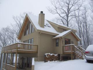 Ski In Ski Out View of Slopes - Wintergreen vacation rentals