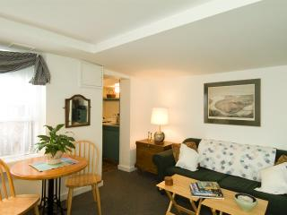 Special! Monument House Furnished Apartment (M466) - Boston vacation rentals