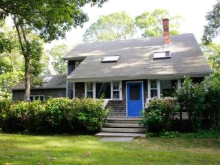 Chilmark Contemporary Cape with Access to Beaches 116588 - Chilmark vacation rentals