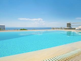 Villa with amazing sea view- private swimming pool - Mykonos vacation rentals