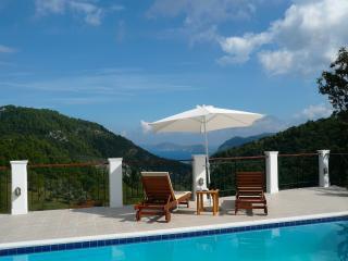 Skopelos Country Villa - Sendoukia - Skopelos vacation rentals