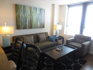LUX 2BR/2BA APT DOWNTOWN BOSTON + INDOOR POOL - Boston vacation rentals