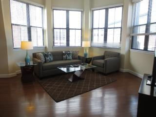 LUX 2 BR/2BA  APT IN POST-WAR BUILDING WITH WiFi - Boston vacation rentals