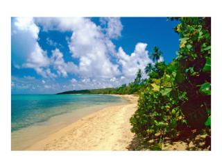 Caribbean Paradise! - Clifton Springs vacation rentals