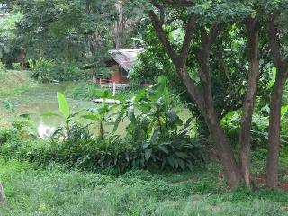 A Peaceful Cosy Place in Chiang Mai - Chiang Mai Province vacation rentals