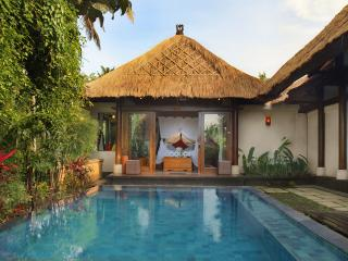 Rustic Luxury: Villa Ananda - Ubud vacation rentals