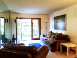 1 Bdrm Condo in OC - Close to Disneyland & Beach - Orange County vacation rentals