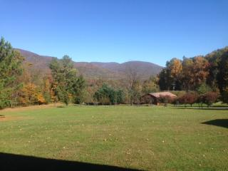Affordable Blue Ridge Mountain Cottage - Nellysford vacation rentals