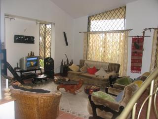 Furnished studio furnished rooms for rent Kilimani daily or monthly basis - Kenya vacation rentals