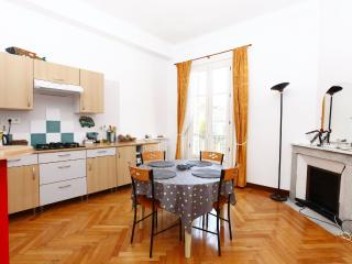 Deux Lions Spacious 1 Bedroom Apartment in Nice - Nice vacation rentals