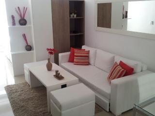 Nuevo Monoambiente en el puerto de Punta del Este - La Barra vacation rentals