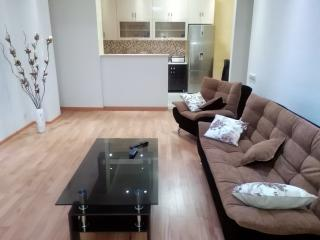 gorgeous 2 bedroom apt in the  heart of Tbilisi - Tbilisi vacation rentals
