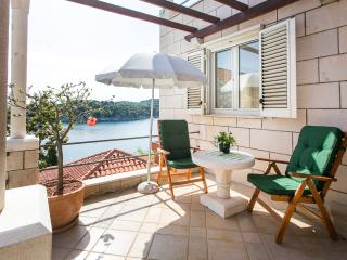 Apartments Sea&Sun-Superior Studio with Sea View and Terrace - Zaton (Dubrovnik) vacation rentals