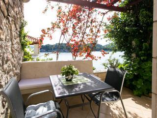 Apartments Sea&Sun-Standard Studio with Sea View and Terrace - Zaton (Dubrovnik) vacation rentals