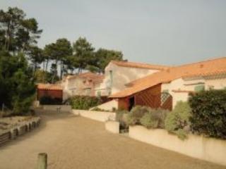 Mas de Vertmarines LS171 - St Jean de Monts - Vendee vacation rentals