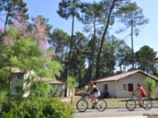 Demeures du lac 2p4 - Casteljaloux - Image 1 - Casteljaloux - rentals
