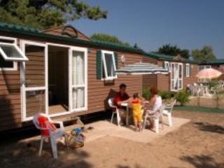 Tamarins Mobile Home 6p - Le Bois Plage - Image 1 - Le Bois-Plage-en-Re - rentals