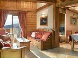 L'Oree des Cimes 3P6 X - Peisey Vallandry PARADISKI - Peisey-Vallandry vacation rentals