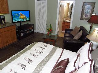 A/C+king bed+jacuzzi tub+kitchen+HDTV-Walk 2 Beach - Koloa vacation rentals