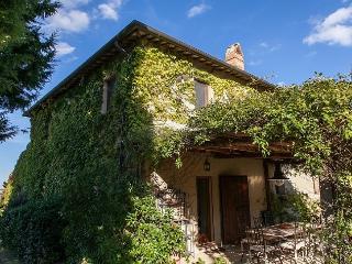 Montefollonico - Montefollonico vacation rentals