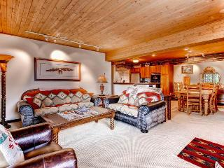 Dulany 302 - Steamboat Springs vacation rentals