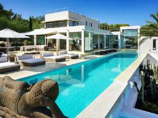 A Relaxation Haven! Modern Hillside Villa By Lagoon with Panoramic Views & Pool - Es Vive vacation rentals