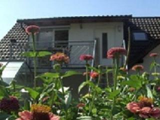 Ferienwohnung Schauenburgblick - Familie Schwenk - Offenburg vacation rentals