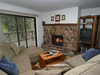 Tahoe Sierra Pines 14 - Incline Village vacation rentals