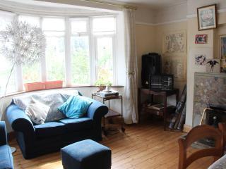 Cosy family home in Dublin city - County Dublin vacation rentals