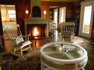 Cozy Fireplace | Views | Dogs Welcome - Bartlett vacation rentals