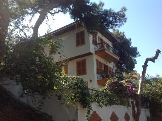 BUYUKADA - ISTANBUL -TURKEY  /  quiet , in the nature of your own - Princes' Islands vacation rentals