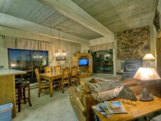 Storm Meadows C310 - Steamboat Springs vacation rentals