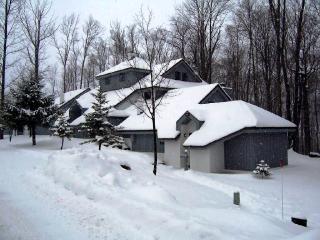 The Woods Resort & Spa-WV13 - Killington vacation rentals