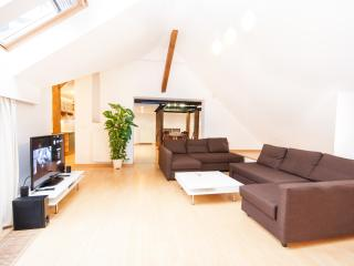 Narodni Loft 3BR, 2BA Penthouse Old Town apartment - Prague vacation rentals