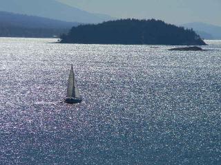 Amazing Oceanfront Beach House Resort - Sleeps 10 - Sunshine Coast vacation rentals