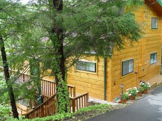 ALPINE VIEW - Sevierville vacation rentals
