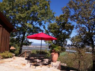 Edgehouse on Petit Jean Mtn.- AR River view!! - Arkansas vacation rentals