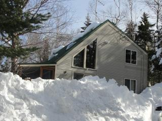 Great Family House Close To Mount Snow - Mount Snow Area vacation rentals